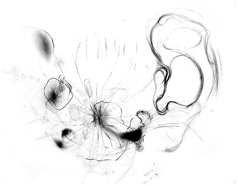 Töne im Ohr - Kohle Zeichnung - Copyright - Maja Oschmann